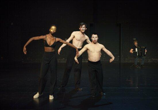 The Goldberg Variations   Michiek Vandevelde
